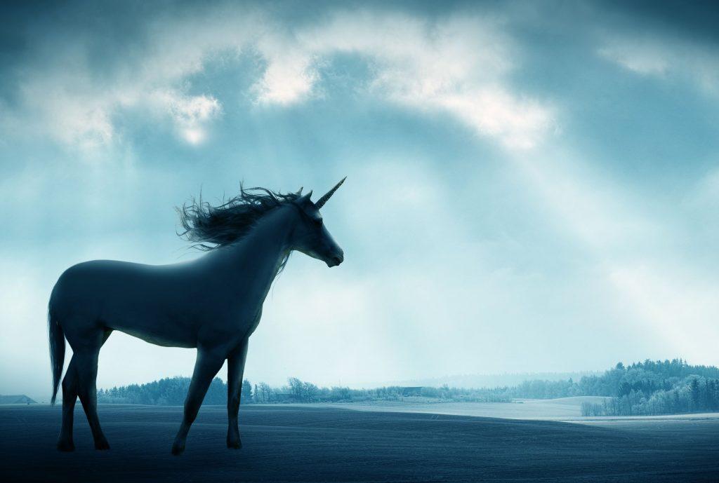 unicornios-reales